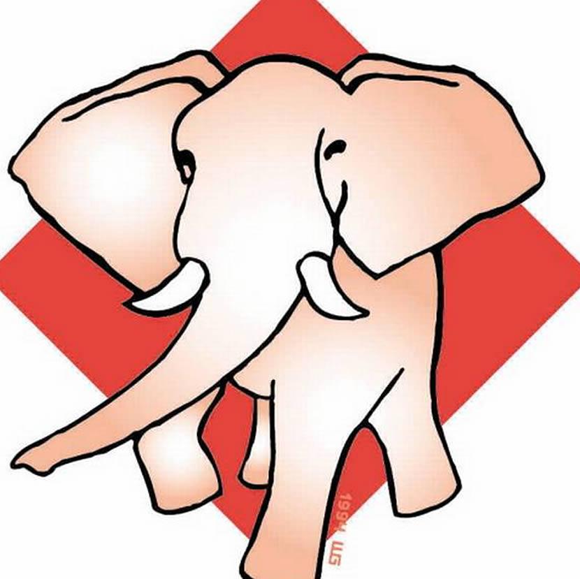 stem op de olifant 2016